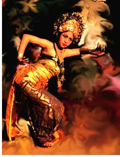Culture - Balinese Performance Arts